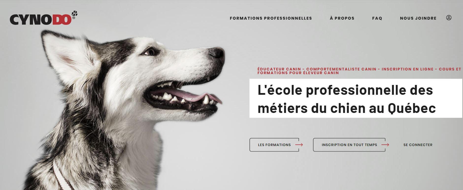 L'école professionnelle des métiers du chien au Québec